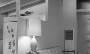 Inteligentny dom i systemy sterowania