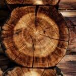 Jaki olej naturalny do drewna? Tungowy, lniany?